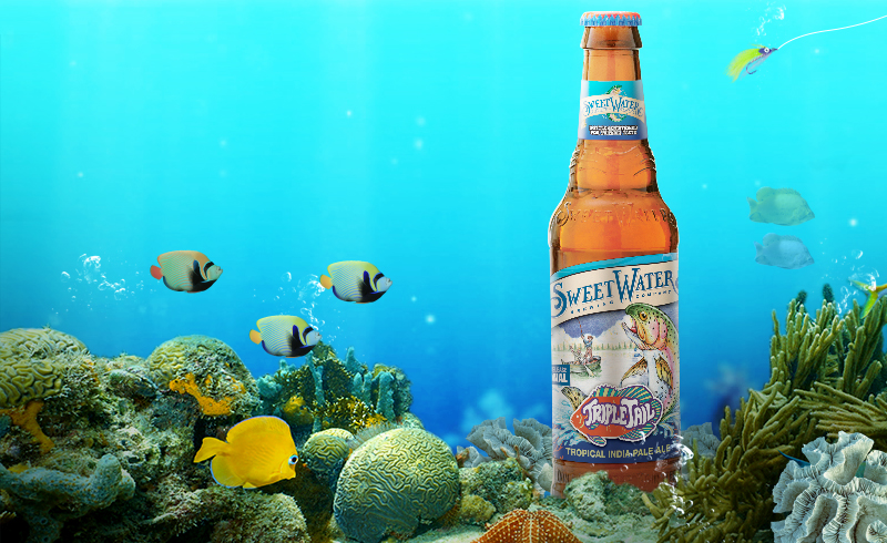 SweetWater: Seasonal Brew